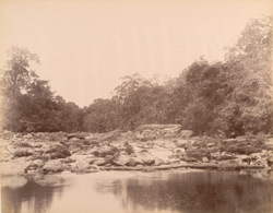 Meenmooty River. No.4. [Travancore]